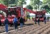 Aardappel Demodag Westmaas 2014