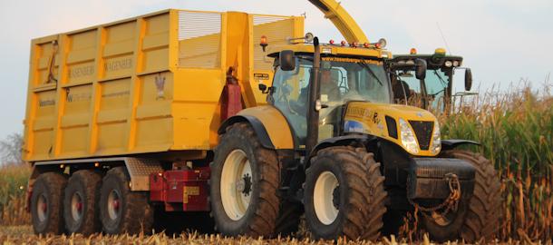 Maïs hakselen door loonbedrijf Rasenberg