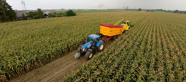 Maïs hakselen met loonbedrijf Smits & Zn.
