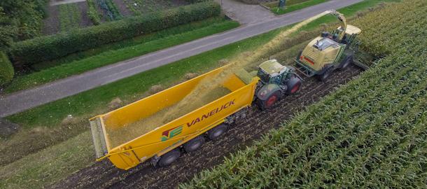 Maïs hakselen met een nieuwe Krone Big X700