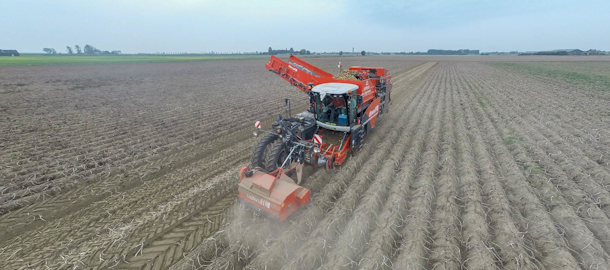 Aardappels rooien met een nieuwe Dewulf Ra3060