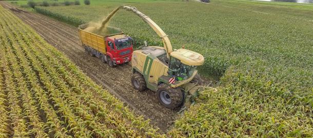 Loonbedrijf de Bruyne in de maïs met een Krone Big X 850