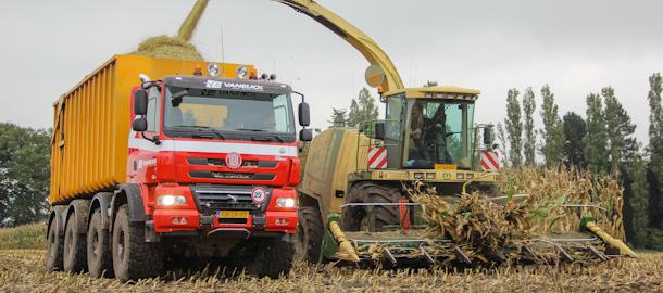 Tatra Phoenix 460 8x8 in de maïs