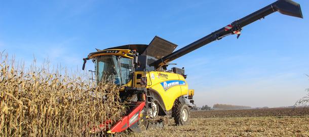 Primeur! New Holland CR10.90 in de maïs