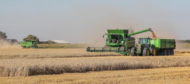 John Deere combines in de tarwe van Thes Agro